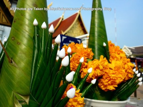 Thailand travel, Chiang Mai, Wat Chedi Luang Temple, flowers to worship Buddha. Photo by KaKa.