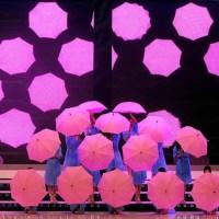 Корейские зонтики красоты