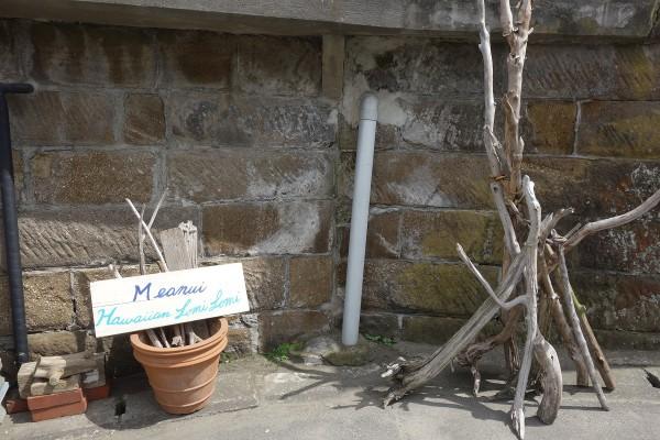 47住宅街の流木