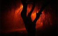 Orange fog / jarr1520 (Flickr)