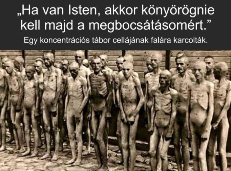 Auschwitz felszabadításakor készült kép.