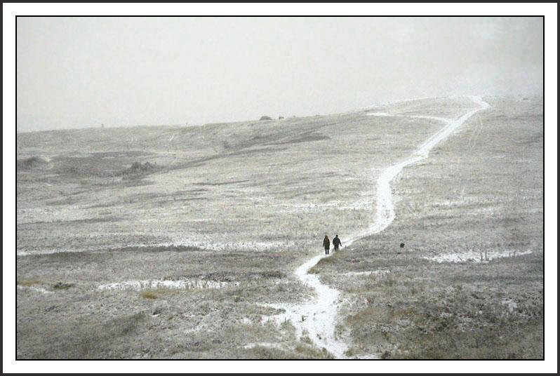 Winter bleakness in Alberta. Fotó: trekearth.com