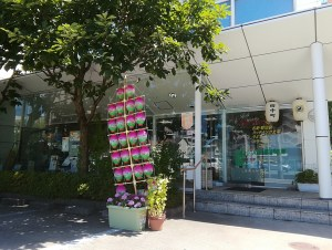 Kanto Festival Akita City japanese stationary shop  office supply  文具 金圓 大町店 竿燈祭り ミニ竿燈