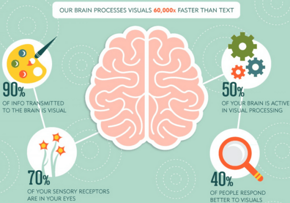 your brain on visuals