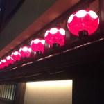 神楽坂〜外堀通 今年最後の花見とワヰン酒場で夜桜散歩