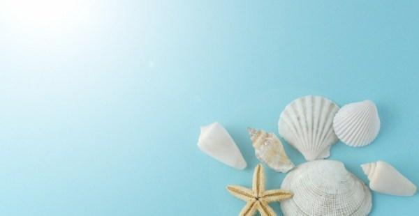 最近の人気記事ベスト3発表!夏らしい話題にアクセスが増えてます。