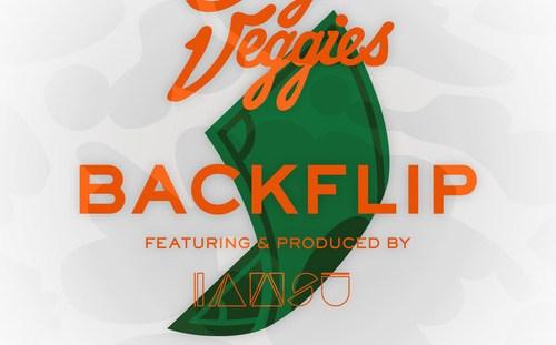 Backflip - Casey Veggies