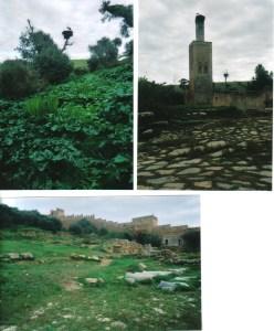 Moroccan ruins