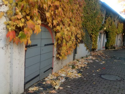 colorful fall leaves dieburg tiny door wall