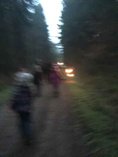 torches hike