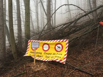 down trees, no trespassing sign, safety, europe, woods, warning sign