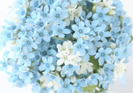2015-04-27_235614