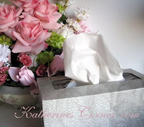 tissue box katherines corner