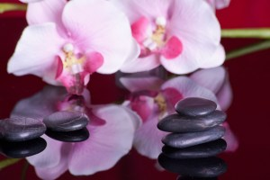 massage therapy prices
