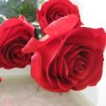 photo of red silk flower roses from Valentine's Day Flower arrangement