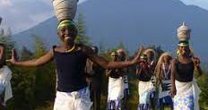 2 Days Gorilla Trek in Rwanda