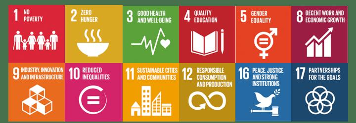 sustainable dev goals