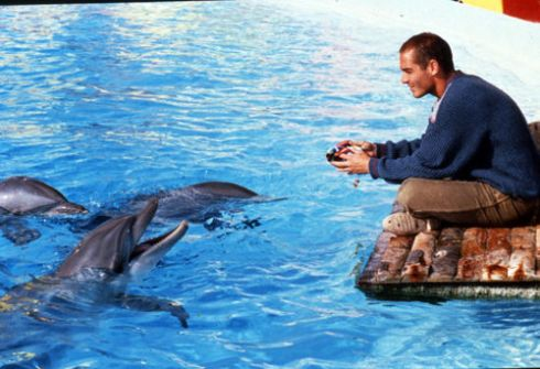 Dude has pet dolphins... beats the shit out of a dog.
