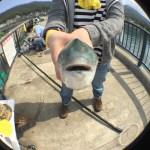 魚眼レンズで魚の気持ち(笑)