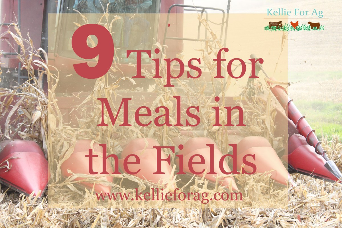 9 Tips for Meals in the Fields