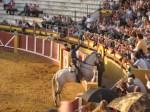 fuengirola spain bullfight