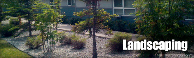 commercial-landscaping-header
