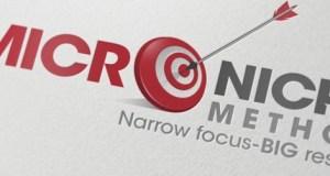 micro niche site