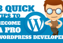 8 Quick Tips to Become a Pro WordPress Developer