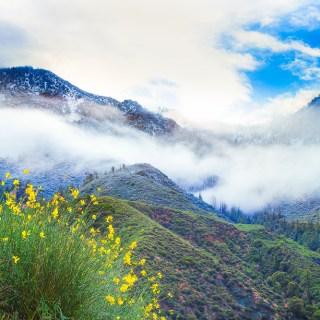 Mt-Baldy-Landscape-Kevin-Kowalewski-1