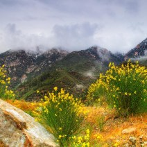 Mt-Baldy-Landscape-Kevin-Kowalewski-6