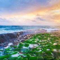 Santa-Cruz-Landscape-Kevin-Kowalewski-6