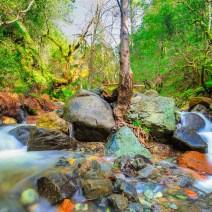 SugarLoaf-SP-Sonoma-Landscape-Kevin-Kowalewski-5