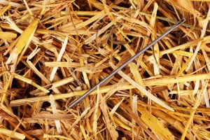"Is early orthodontic treatment based on evidence? Looking for ""needles in a haystack""."