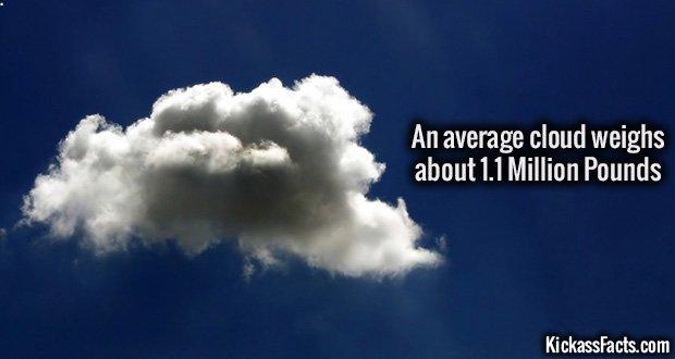 1011 Cloud Weight
