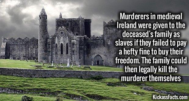 1017 Medeivel Ireland Murders