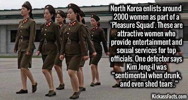 1261 North Korea Pleasure Squad