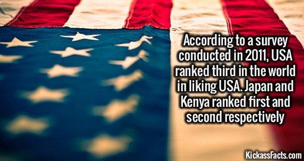 1346 USA Liking USA