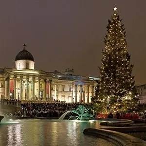 Trafalgar Square Christmas-Interesting Facts About London