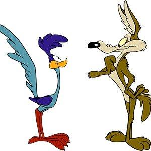 Wile E Coyote Roadrunner