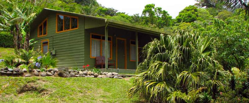 wide-1000-monteverde-cloud-forest-lodge