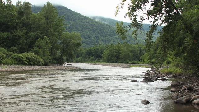 Esopus Creek is a favorite spot for lazy tubing and trout fishing.