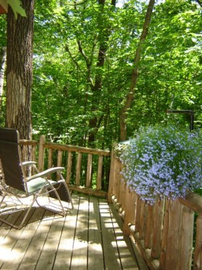 Calling all nature lovers. This treehouse rental wraps you in greenery.