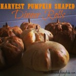 Harvest Pumpkin Shaped Dinner Rolls – Easy To Do – Kid Friendly Things To Do .com