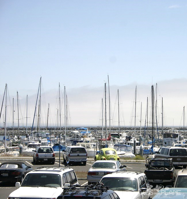 Escape the City - A Relaxing Day in Half Moon Bay, California