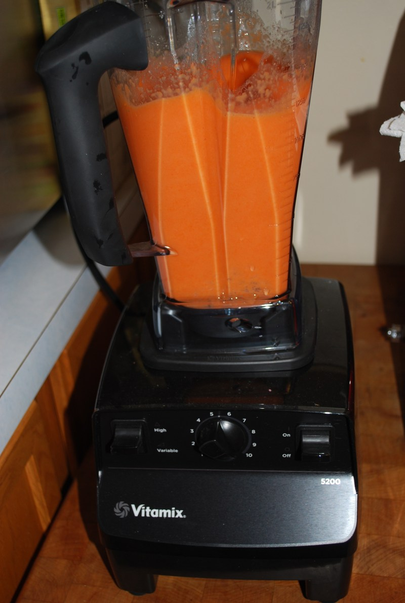 Large Of Vitamix 5200 Costco