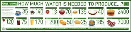 How much water it takes to produce these foods- Kid World Citizen