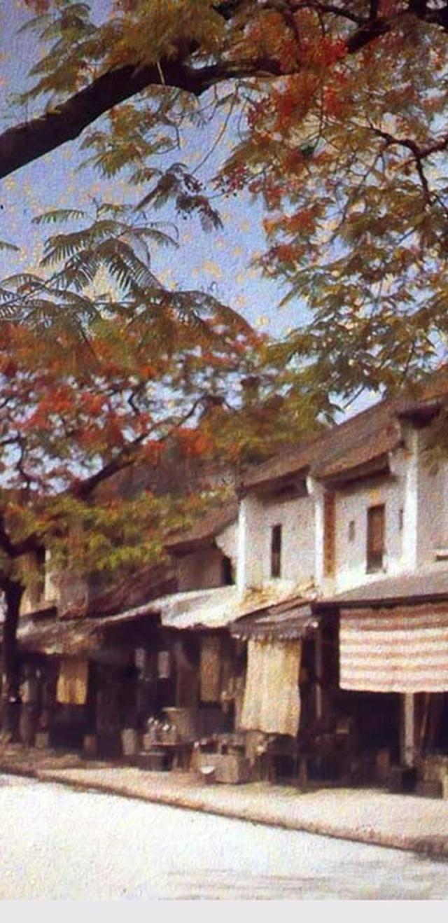 Phố Hàng Thiếc ở Hà Nội năm 1915.