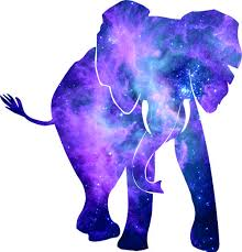 purple elephant 2