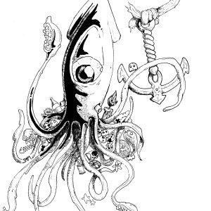 Squid by Sam Mason