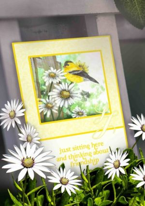 friendship card goldfinch on daisies beside rustic gate